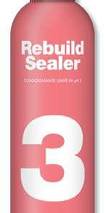 Sealer Leave in Conditioner